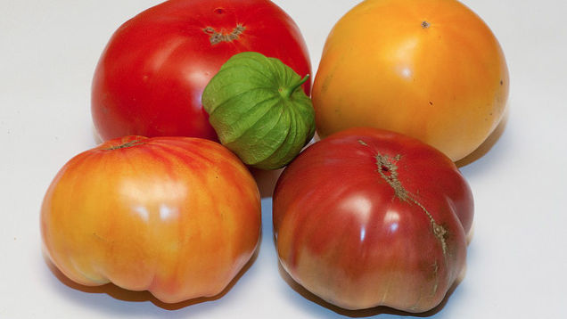 Hack #55: Slow Down rotting tomatoes