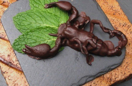 Chocolate-Dipped Insects