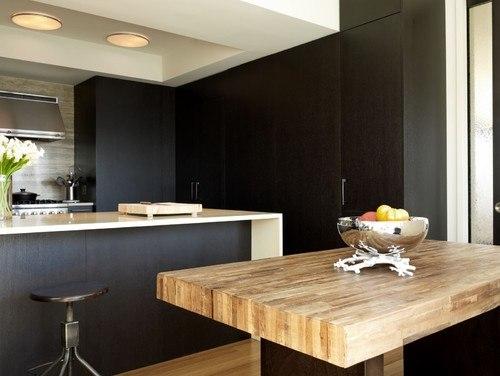 Contemporary Sleek Kitchen in New York City