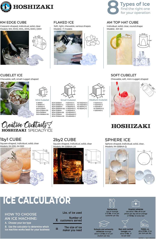 8 Types of Hoshizaki Ice Infographic