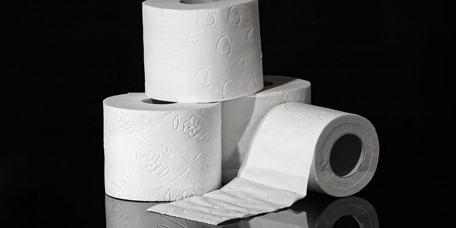 The Different Types of Commercial Toilet Paper Dispensers and Holders