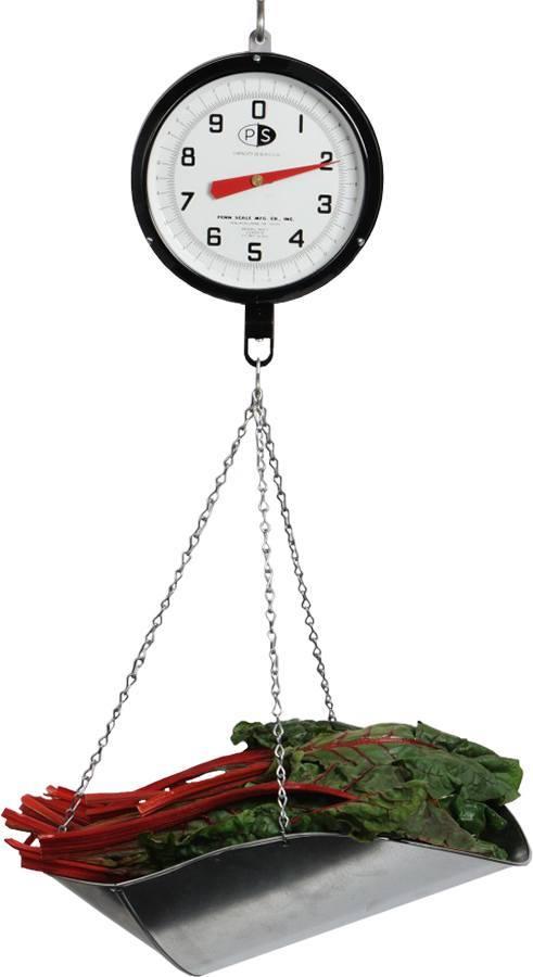 Penn Scale 820 V