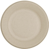 World Centric Disposable Paper Dinnerware